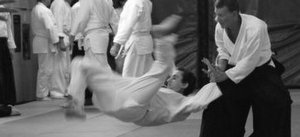 Aikido Training at Budokan